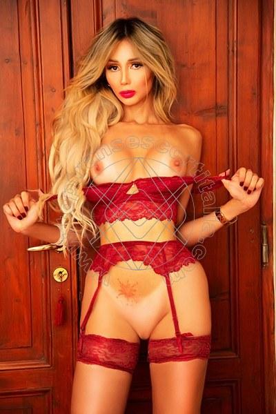 Stefany Hilton Angel SAVONA 3898422778